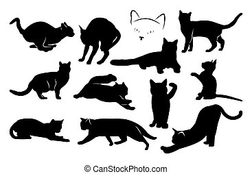 set of black cat silhouettes. vector image