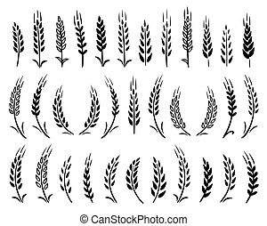 set of black hand drawn wheat ears icons