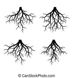 Set of Black Roots. Vector Illustration.