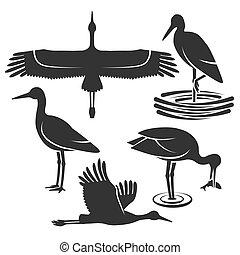 Set of black stork silhouettes