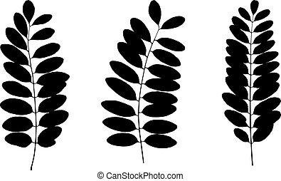 Set of black tree leaf silhouettes. Vector illustration