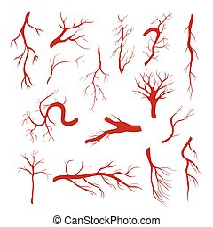 Set of blood vessels - modern vector isolated clip art on...