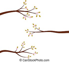 Set of blossoming tree branches.