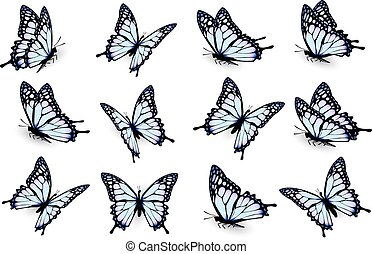 Set of blue butterflies, flying in different directions. Vector.