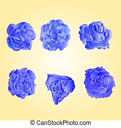 Set of blue roses vector.eps