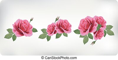 Set of bouquets of roses, can be used as greeting card,...