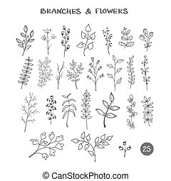 Set of branches. Hand drawn black ink isolated floral decorative elements. Herb silhouette collection