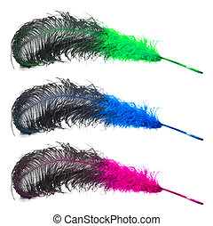 Set of bright  ostrich\'s feathers on a white background
