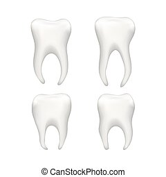 Set of bright realistic human teeths isolated on white - Set...