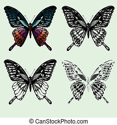 Set of butterflies. hand-drawing. Vector illustration.