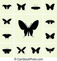 Set of butterflies icons