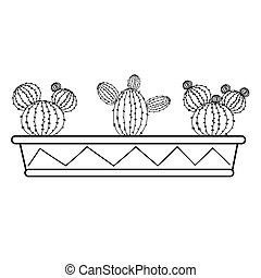 Set of cacti in a long box.