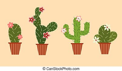Set of cacti with flowers in pots.