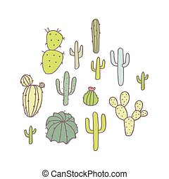Set of cactus and succulents, vector illustration.