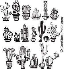 Set of Cactuses