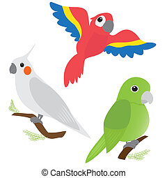 Set of cartoon parrots - macaw, corella, amazon