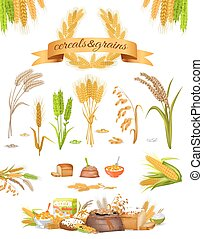 Set of Cereals and Grains on White Background - Set of...