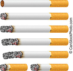 Set of Cigarettes During Different Stages of Burn. Each is...