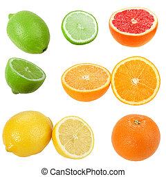 Set of citrus fruits. Isolated on white background....