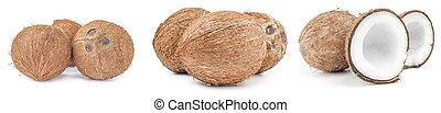 Set of coconut isolated on a white background