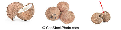 Set of coconut on a isolated white background