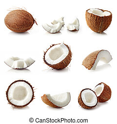 Set of coconut pieces isolated on white