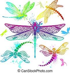 Set of color dragonflies