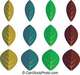 Set of color leaves
