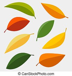Set of colorful autumn leaves isolated on white