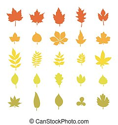 Set of colorful autumn leaves. Leaf collection isolated on white background