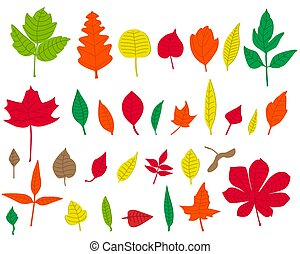 Set of colorful autumn leaves on white background. Flat Vector illustration.
