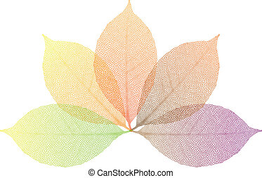 set of colorful autumn leaves, vector background