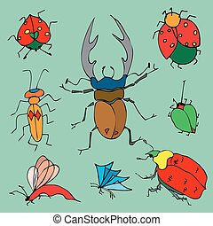 Set of colorful bugs. Drawing of beetles. Insect on the green background. Cartoon bug illustration.