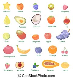 Set of colorful cartoon fruit icons apple, pear, strawberry, orange, peach, plum, banana, watermelon, pineapple, papaya, grapes, cherry, kiwi, lemon, mango. Vector illustration isolated on white.