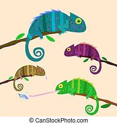Set of colorful chameleons sitting on the branch on light background