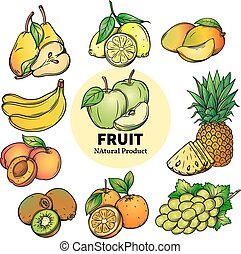 set of colorful hand draw fruit