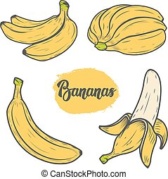 Set of colorful hand drawn banana illustrations. Design elements