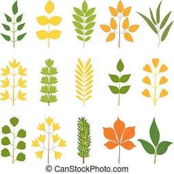 Set of colorful leaves, vector illustration