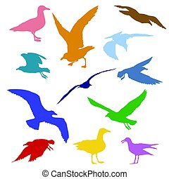 Set of colorful silhouettes of seagulls