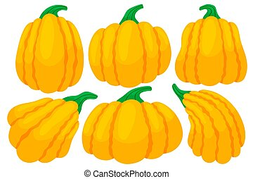 Set of colorful thanksgiving pumpkins. Cartoon and flat style. Vector illustration on white background.