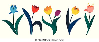 Set of colorful tulips in flat style isolated on white background. A set of bouquets of beautiful spring flowers. Garden bed. Springtime design element.