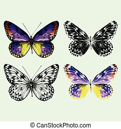Set of colorful vector butterflies, hand-drawing.