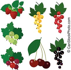 Set of colourful simple vector garden berries - Beautiful...