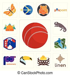 Set of cricket ball, linen, bird nest, toucan, 100th anniversary, football, democratic party, chameleon, norse icons
