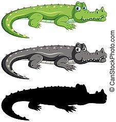 Set of crocodile on white background