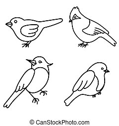 Set of cute birds in vector