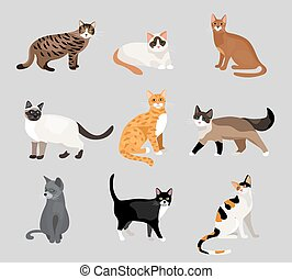 Set of cute cartoon kitties or cats with different colored...