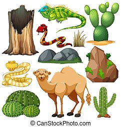 Set of cute desert animal and nature