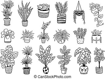 Set of cute Indoor and outdoor plants in pots. Hand-drawn black and white flowers, cactus, and succulents. Vector illustration. Natural design elements can be used for postcards, banners, websites or ads.