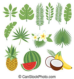 Set of cute tropical leaves and fruits, palm leaves and flowers. Pineapple, watermelon, bananas, coconut. Collection of scrapbooking elements for beach party. Objects for decoration, design on advertising booklets, banners, flayers.